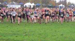 2015 BC Cross Country Championships: Junior girls race