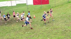 Race video: 2016 BC Cross Country Championships – boys and girls age: 11