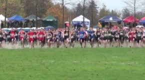 2015 BC Cross Country Championships: Boys junior race
