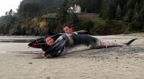 Fartlek & Low Things in West Auckland Part 2