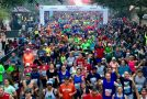Running Titans Prevail at Humana Rock 'n' Roll San Antonio Marathon
