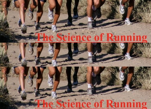 Steve Magness – The Science of Running #2